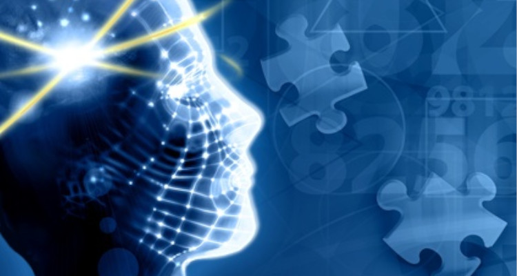 agro-alimentaire.enligne-no.com : Internship seekers